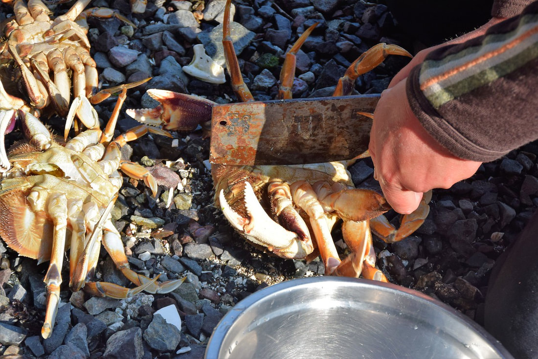 Dungeness Crabs - Orca Dreams