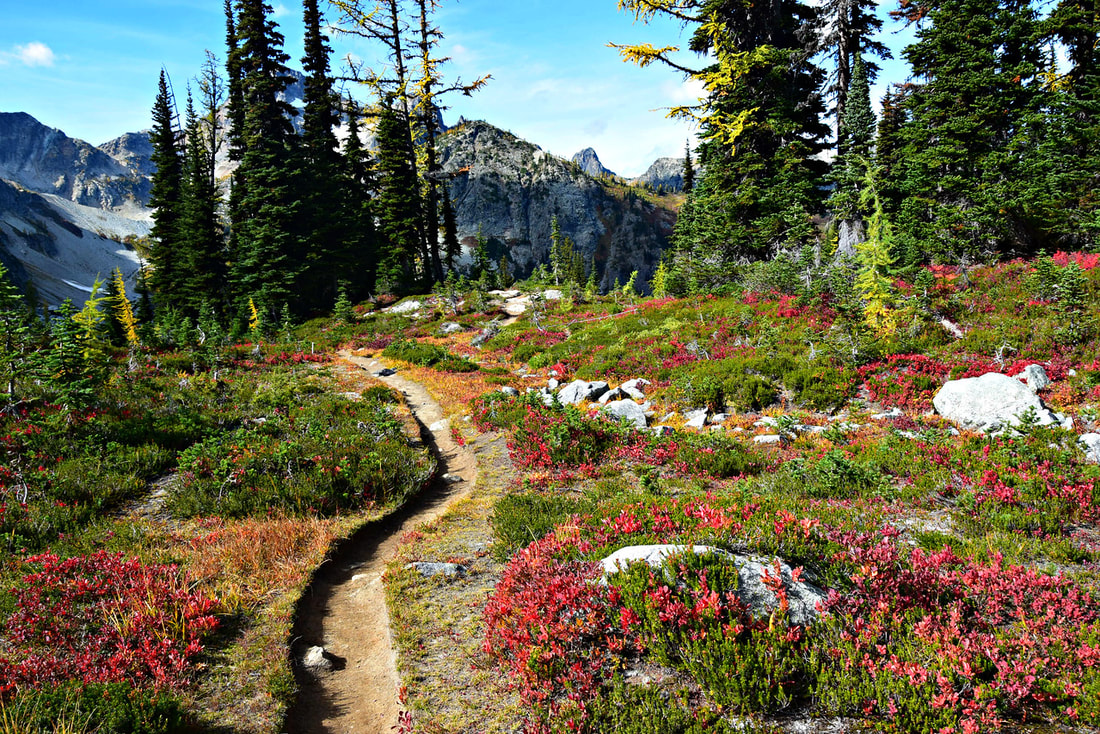 Heather Pass - Maple Pass Loop - North Cascades National Park