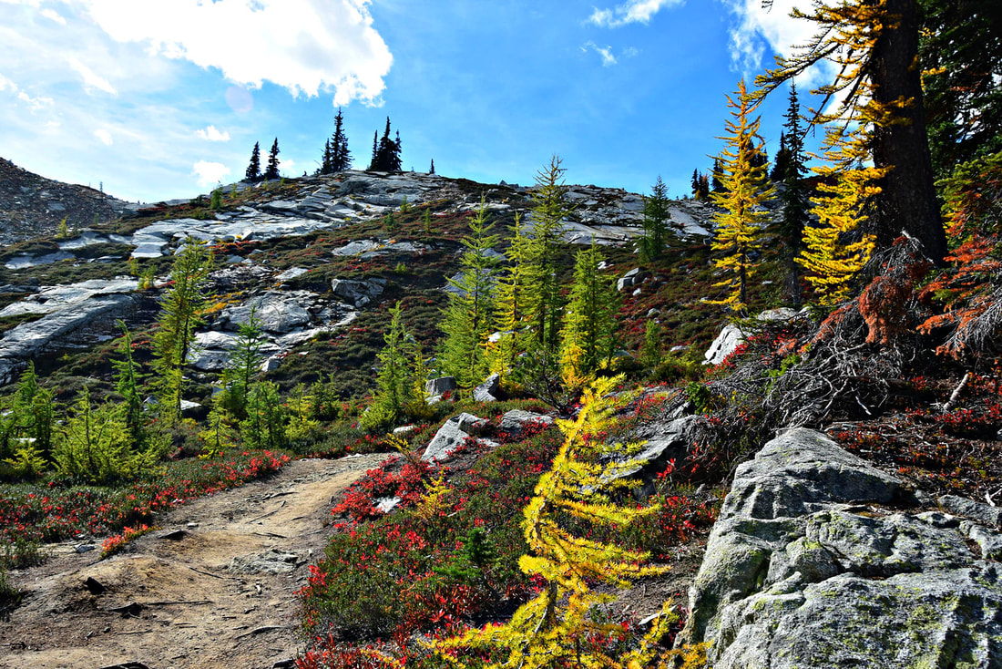 Maple Pass Loop - North Cascades National Park