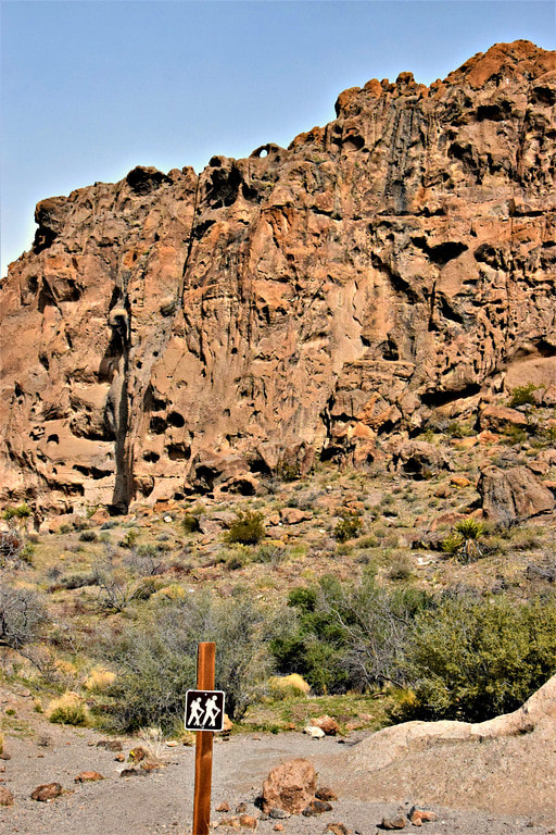 Rings Loop Trail - Mojave National Preserve
