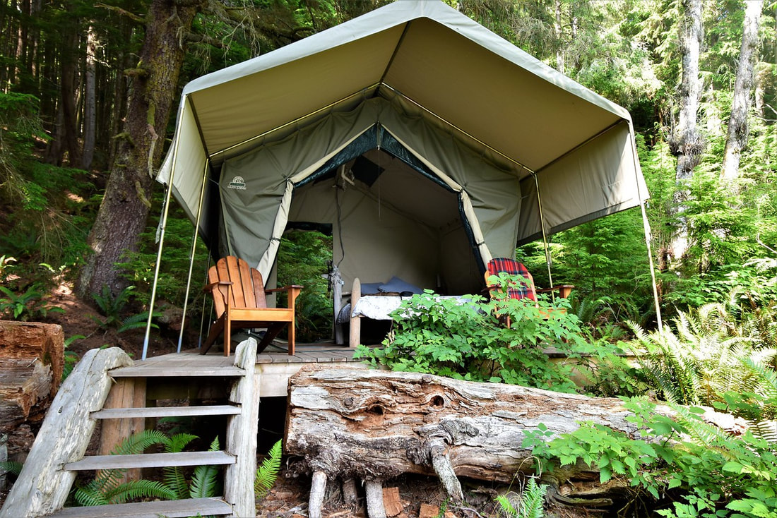 Orca Dreams Camp Tent