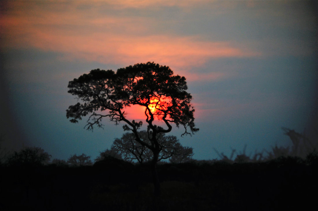 Sunset, Kruger National Park, South Africa