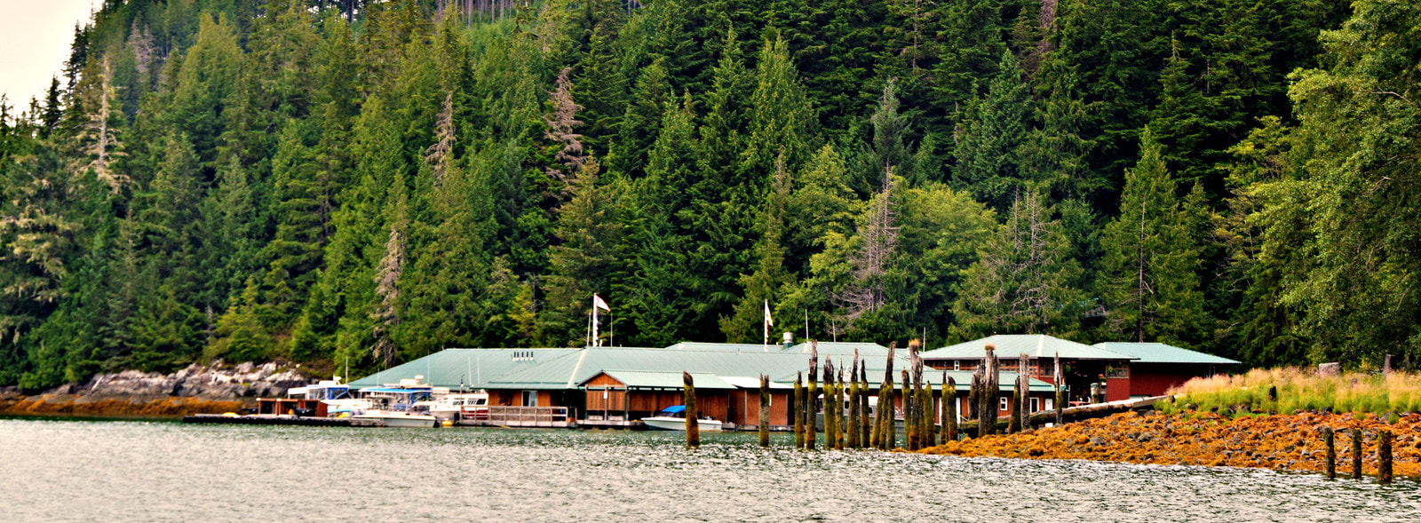 Knight Inlet Lodge