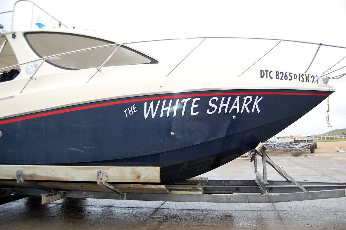 White Shark Diving Co., Van Dyks Bay, South Africa