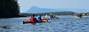 Sea Kayaking - Blackney Pass, North Vancouver Island